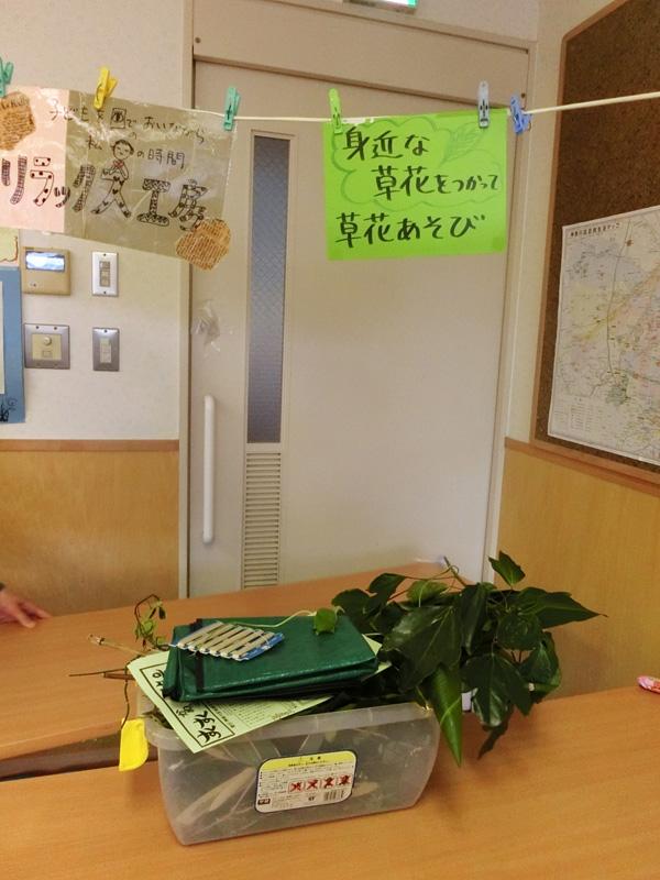 kanagawa_kanachie02.jpg